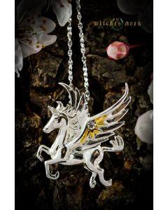 Pegasus of the Stars